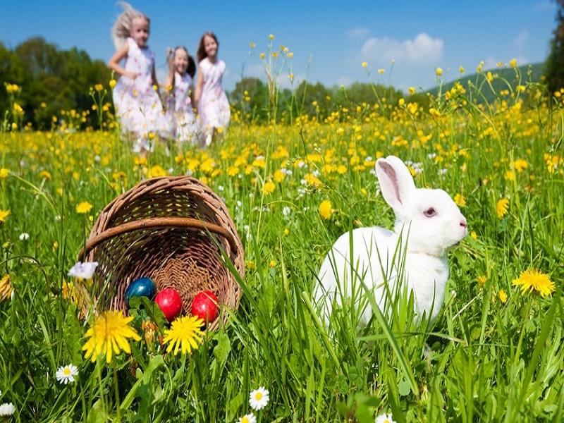 Pasqua a Rimini